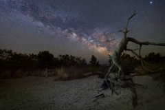 Assateague Island at Night