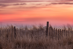 Avalon NJ Beach Sunrise Jason Gambone 2016-66
