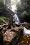 Ricketts-GLen-October-2016-Jason-Gambone-182