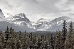 Canadian-Rocky-Mountains-3-Jason-Gambone-135-Pano-Edit